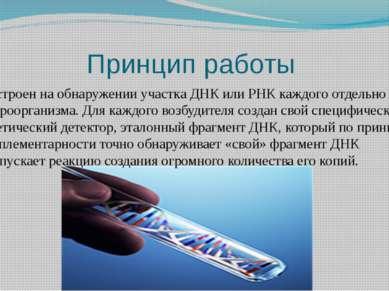 Принцип работы Построен на обнаружении участка ДНК или РНК каждого отдельно м...