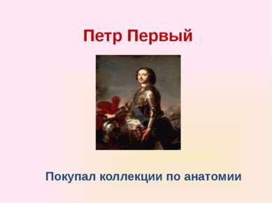 Петр Первый Покупал коллекции по анатомии