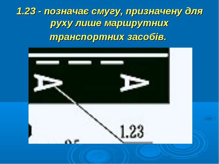 1.23 - позначає смугу, призначену для руху лише маршрутних транспортних засобів.