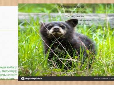 У медведя во бору Грибы, ягоды беру, А медведь не спит И на нас рычит.