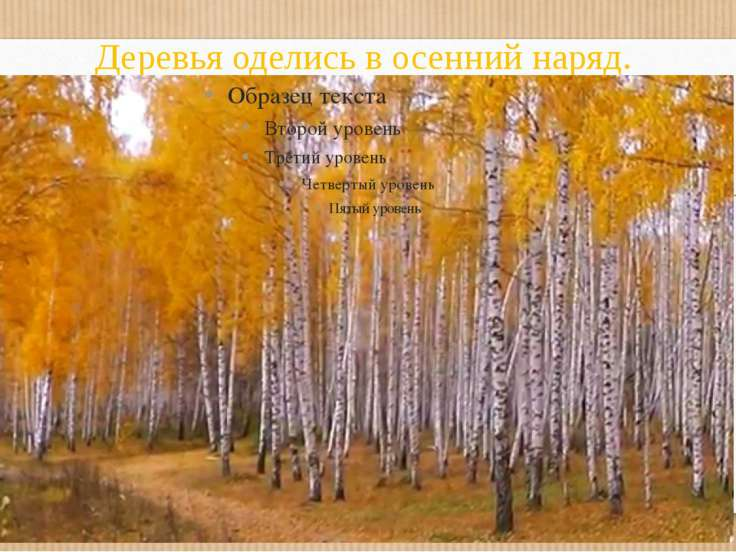 Деревья оделись в осенний наряд.