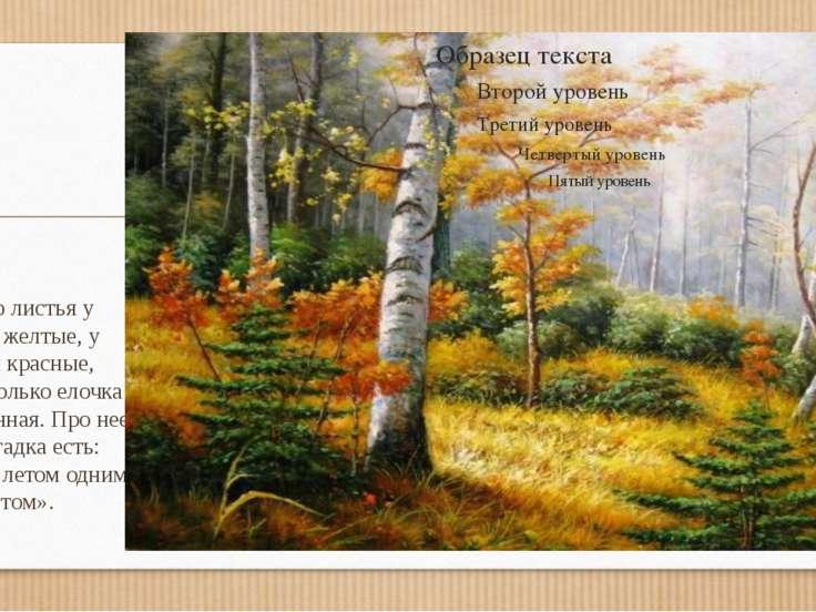 Осенью листья у березки желтые, у рябины красные, желтые. Только елочка стоит...