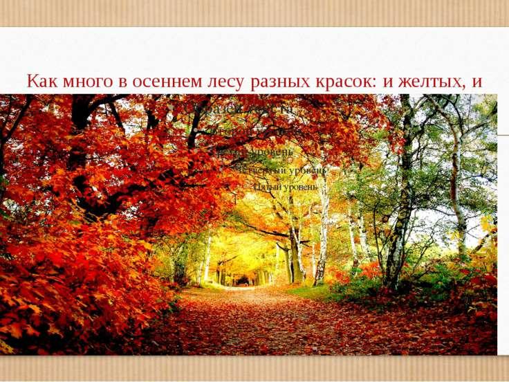 Как много в осеннем лесу разных красок: и желтых, и зеленных и красных – разных!