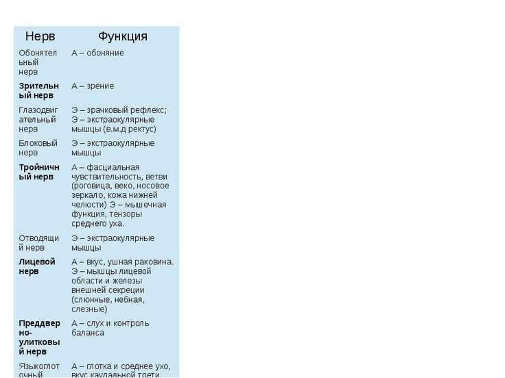 Нерв Функция Обонятельный нерв А – обоняние Зрительный нерв А – зрение Глазод...