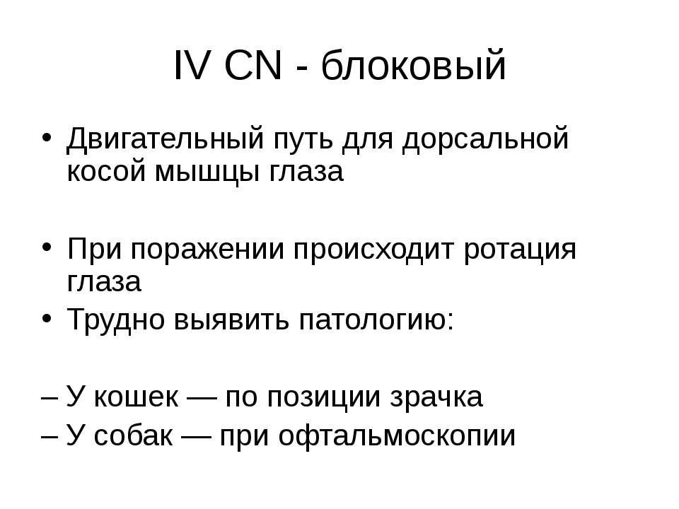 IV CN - блоковый Двигательный путь для дорсальной косой мышцы глаза При пораж...