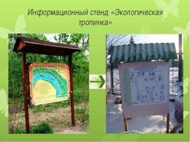 Информационный стенд «Экологическая тропинка»