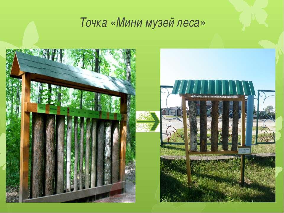 Точка «Мини музей леса»