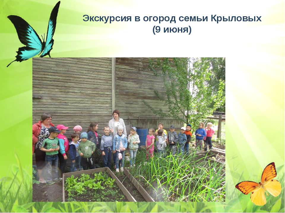 Экскурсия в огород семьи Крыловых (9 июня)