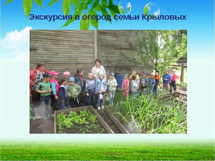 Экскурсия в огород семьи Крыловых