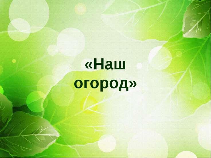 «Наш огород»