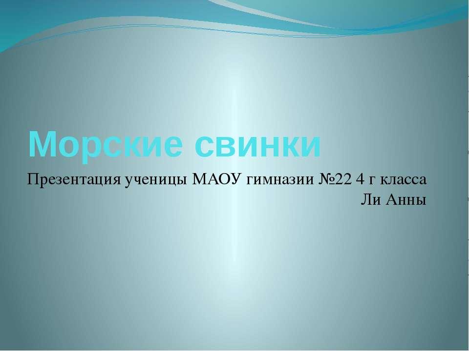 Морские свинки Презентация ученицы МАОУ гимназии №22 4 г класса Ли Анны
