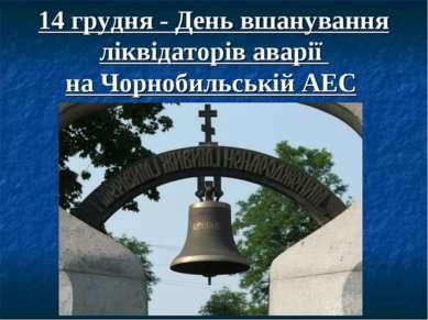 14 грудня - День вшанування ліквідаторів аварії на Чорнобильській АЕС