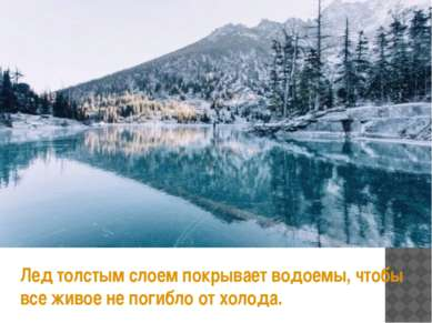 Лед толстым слоем покрывает водоемы, чтобы все живое не погибло от холода.