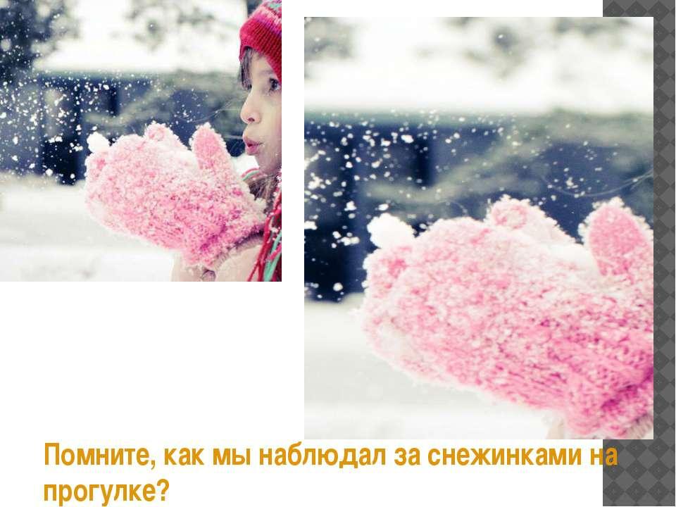 Помните, как мы наблюдал за снежинками на прогулке?