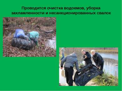 Проводится очистка водоемов, уборка захламленности и несанкционированных свалок