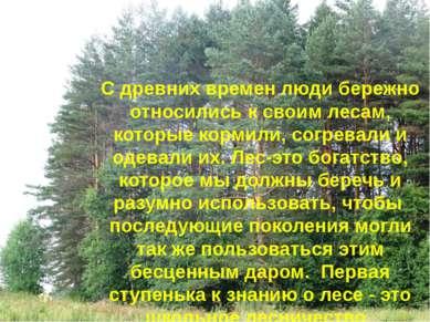 С древних времен люди бережно относились к своим лесам, которые кормили, согр...