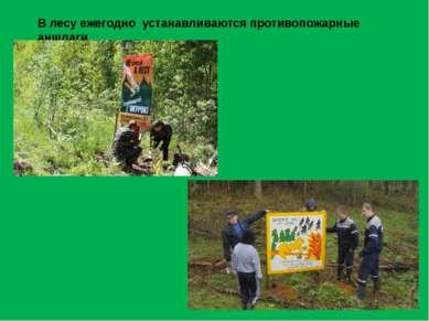 В лесу ежегодно устанавливаются противопожарные аншлаги