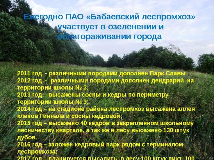 Ежегодно ПАО «Бабаевский леспромхоз» участвует в озеленении и облагораживании...