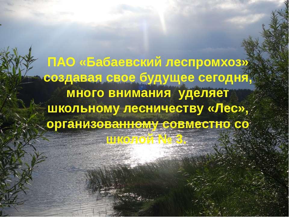 ПАО «Бабаевский леспромхоз» создавая свое будущее сегодня, много внимания уде...