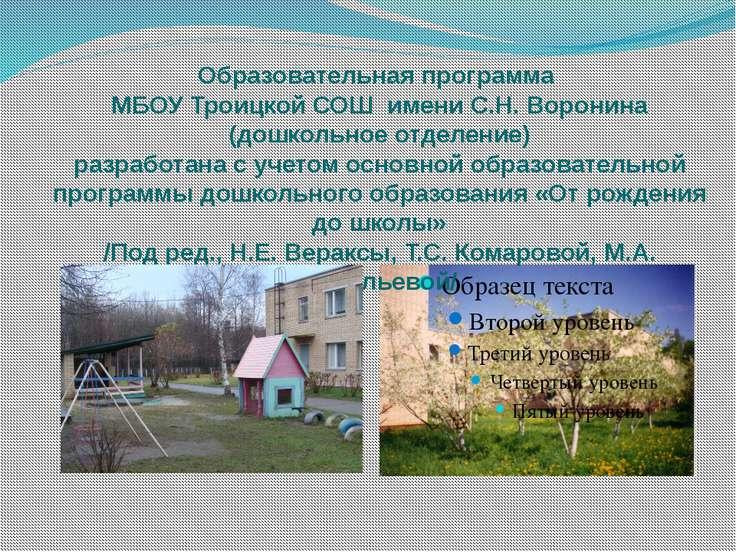 Образовательная программа МБОУ Троицкой СОШ имени С.Н. Воронина (дошкольное о...