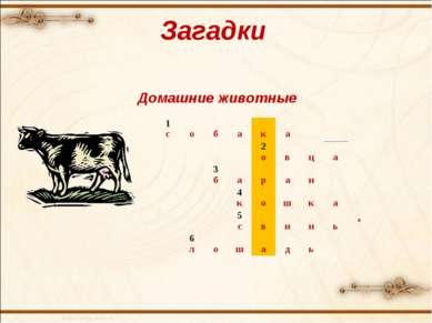Загадки Домашние животные 1 с о б а к а 2 о в ц а  3 б а р а н  4 к о ш к а...