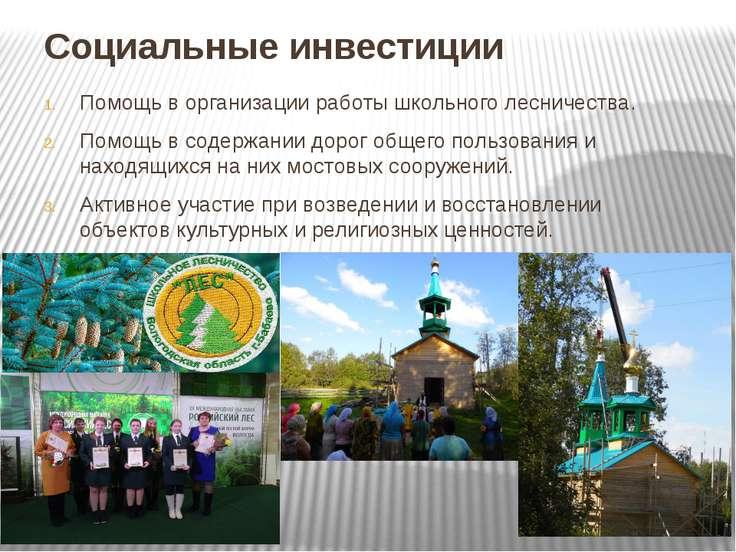 Социальные инвестиции Помощь в организации работы школьного лесничества. Помо...