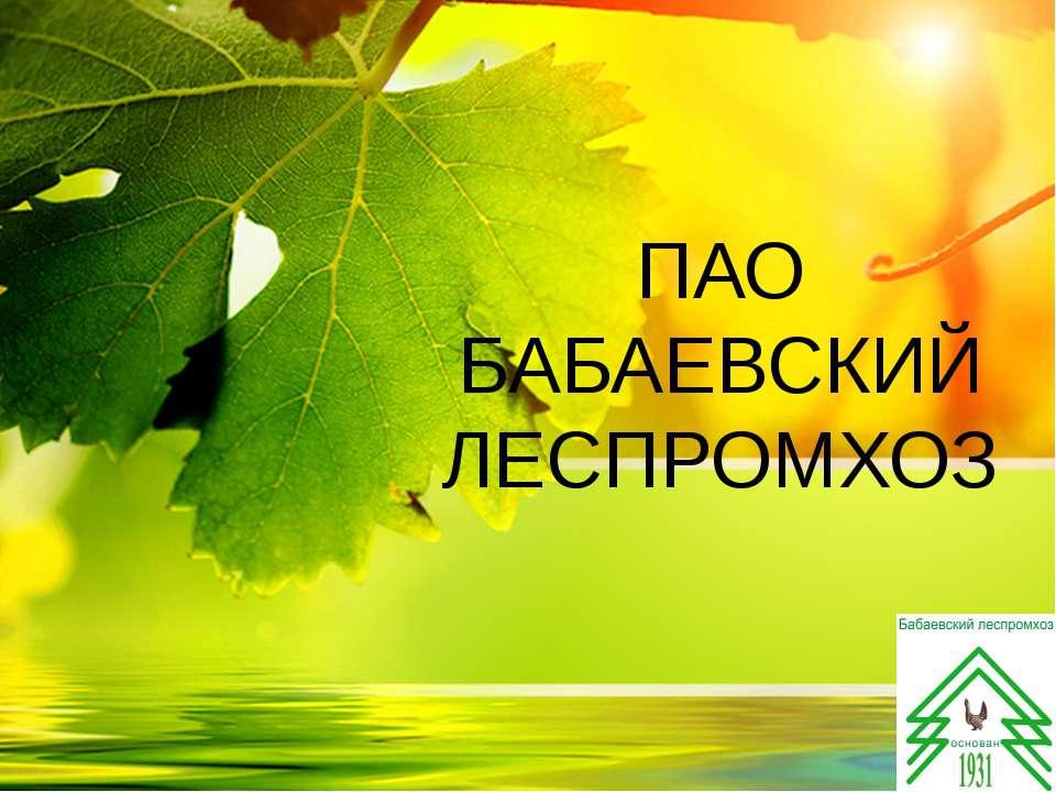 ПАО БАБАЕВСКИЙ ЛЕСПРОМХОЗ