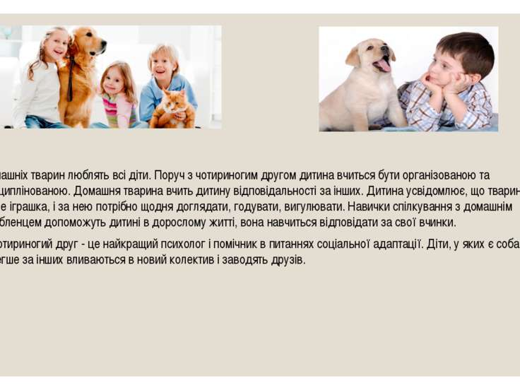 Домашніх тварин люблять всі діти. Поруч з чотириногим другом дитина вчиться б...
