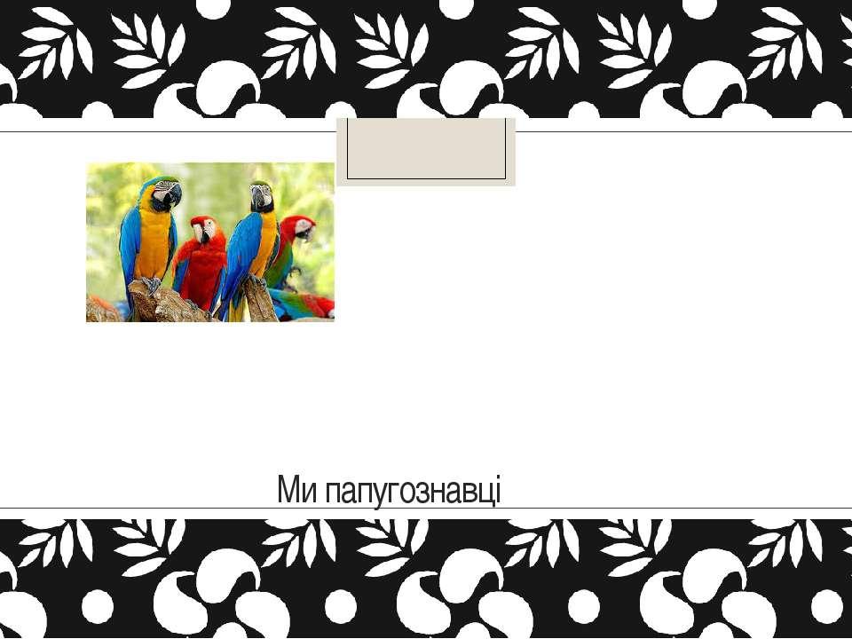 Ми папугознавці