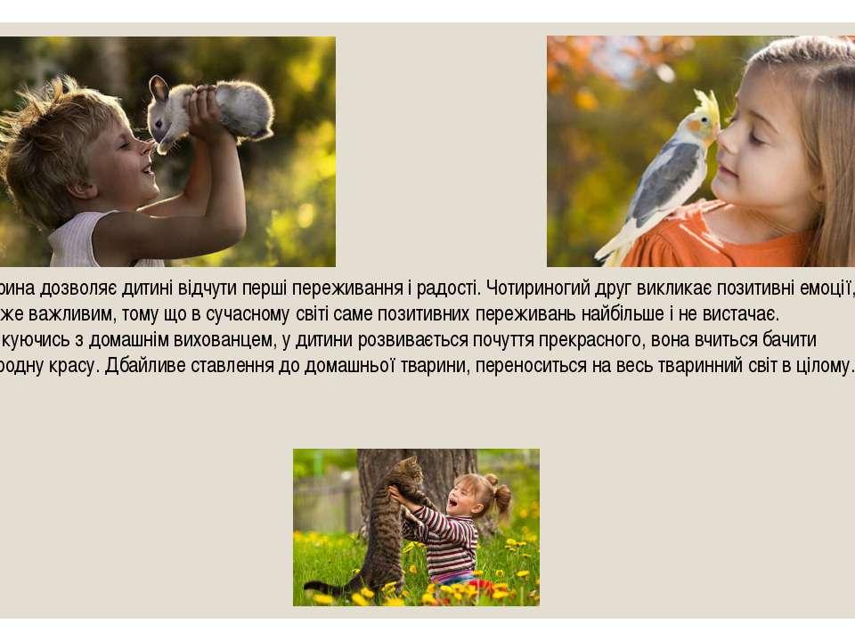 Тварина дозволяє дитині відчути перші переживання і радості. Чотириногий друг...