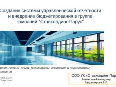 Создание системы управленческой отчетности и внедрение бюджетирования в групп...