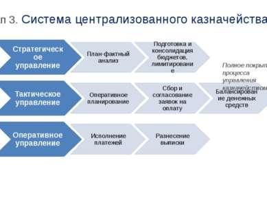 Полное покрытие процесса управления казначейством Этап 3. Система централизов...