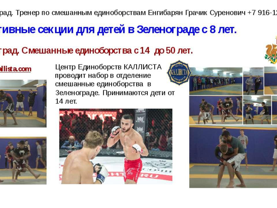 Спортивные секции для детей в Зеленограде с 8 лет. Зеленоград. Смешанные един...