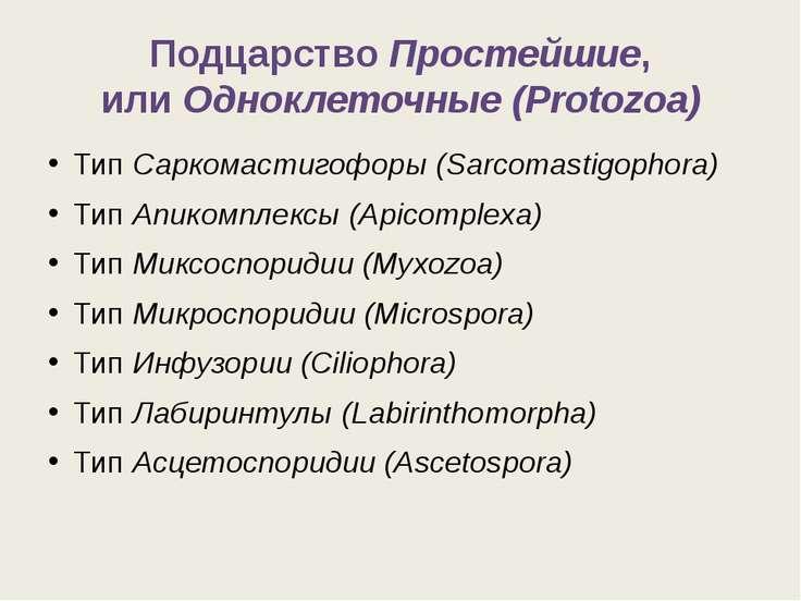 ПодцарствоПростейшие, илиОдноклеточные (Protozoa) ТипСаркомастигофоры (Sar...