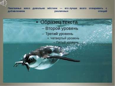 Пингвинье мясо довольно жёсткое — еголучше всего отваривать с добавлением ра...