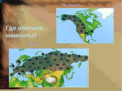 Где обитали мамонты? Сев. Америке Евразии