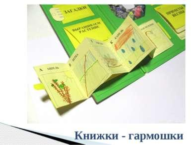 Книжки - гармошки