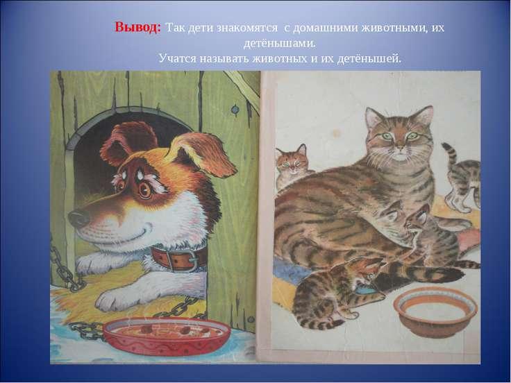 Вывод: Так дети знакомятся с домашними животными, их детёнышами. Учатся назыв...