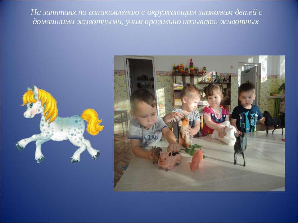 На занятиях по ознакомлению с окружающим знакомим детей с домашними животными...