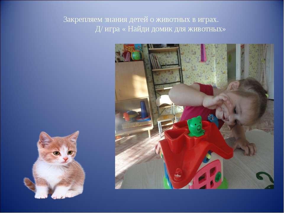 Закрепляем знания детей о животных в играх. Д/ игра « Найди домик для животных»