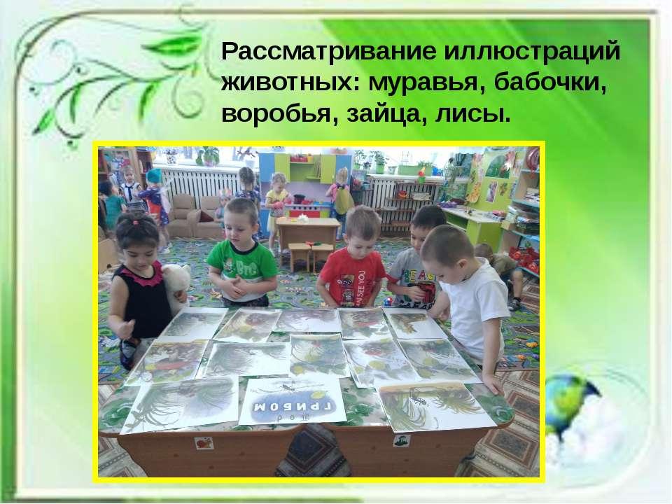 Рассматривание иллюстраций животных: муравья, бабочки, воробья, зайца, лисы.