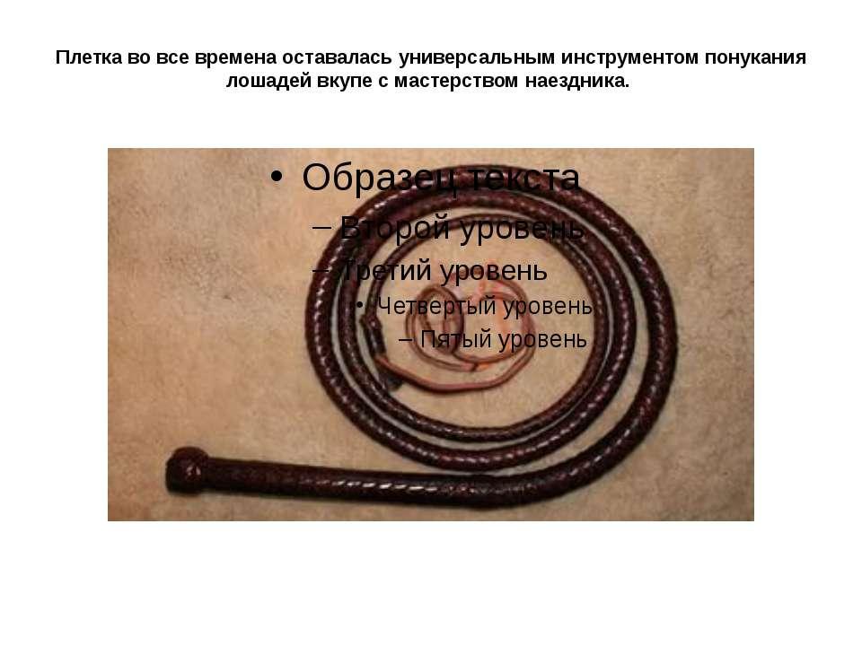 Плетка во все времена оставалась универсальным инструментом понукания лошадей...