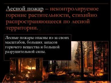 Лесные пожары опасны из-за своих масштабов, больших запасов горючего вещества...