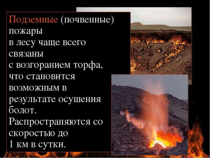 Подземные (почвенные) пожары в лесу чаще всего связаны с возгоранием торфа, ч...