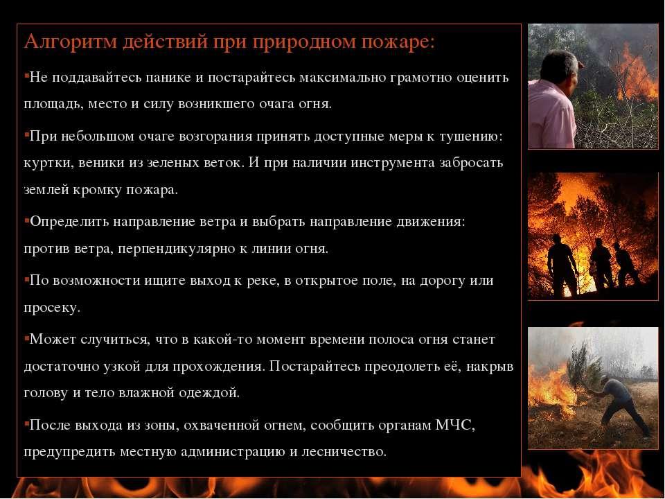 Алгоритм действий при природном пожаре: Не поддавайтесь панике и постарайтесь...