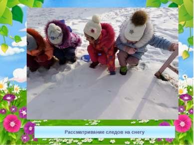 Рассматривание следов на снегу
