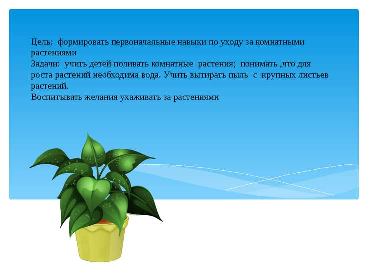 Цель: формировать первоначальные навыки по уходу за комнатными растениями Зад...