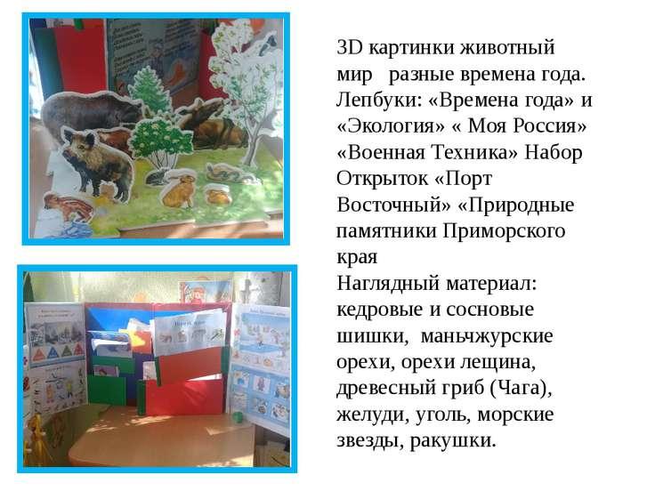 3D картинки животный мир разные времена года. Лепбуки: «Времена года» и «Экол...