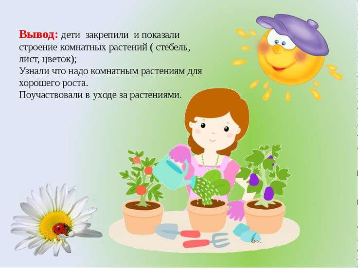 Вывод: дети закрепили и показали строение комнатных растений ( стебель, лист,...