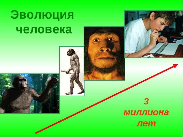Эволюция человека 3 миллиона лет